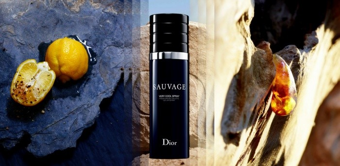 e957060a84 Christian Dior Sauvage Very Cool Spray Review, Price, Coupon ...