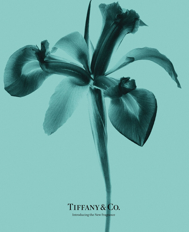 Tiffany & Co Intense Perfume