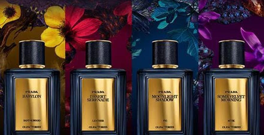 Prada Olfactories Some Velvet Morning Perfume