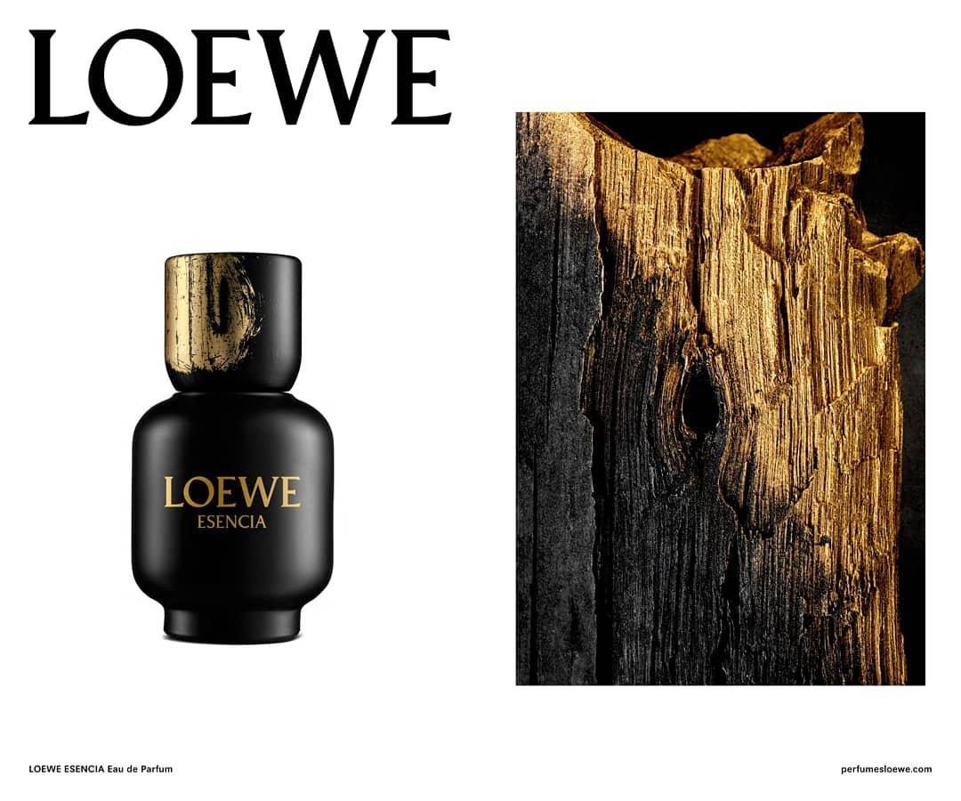 Loewe Esencia pour Homme Eau de Parfum